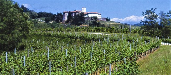 Château Bréjou